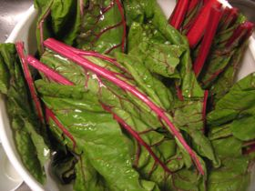 red-swiss-chard